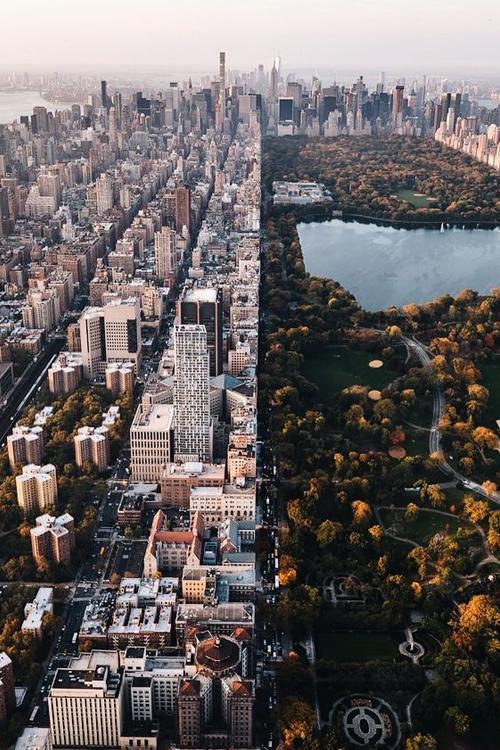 NYC Skyline & Central Park