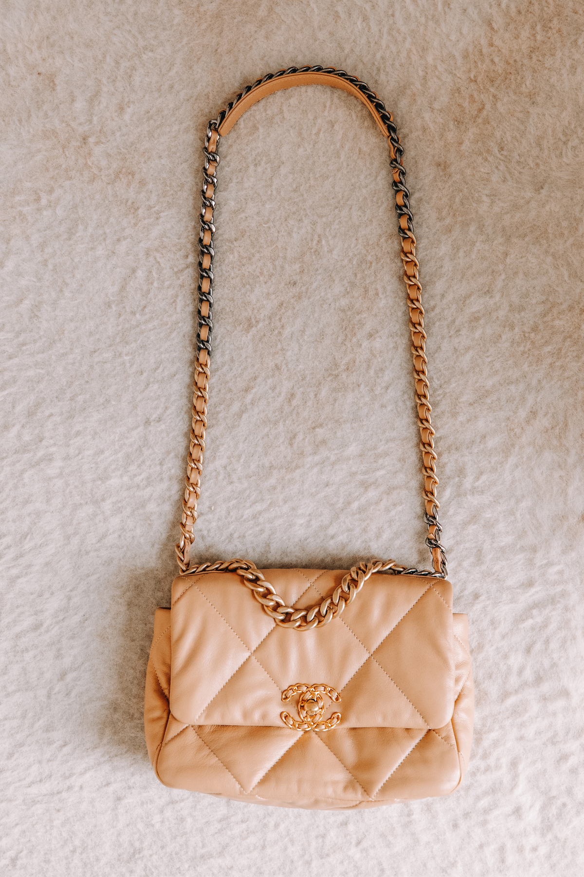 Fashion Jackson Chanel 19 Classic Small Dark Beige Handbag 2