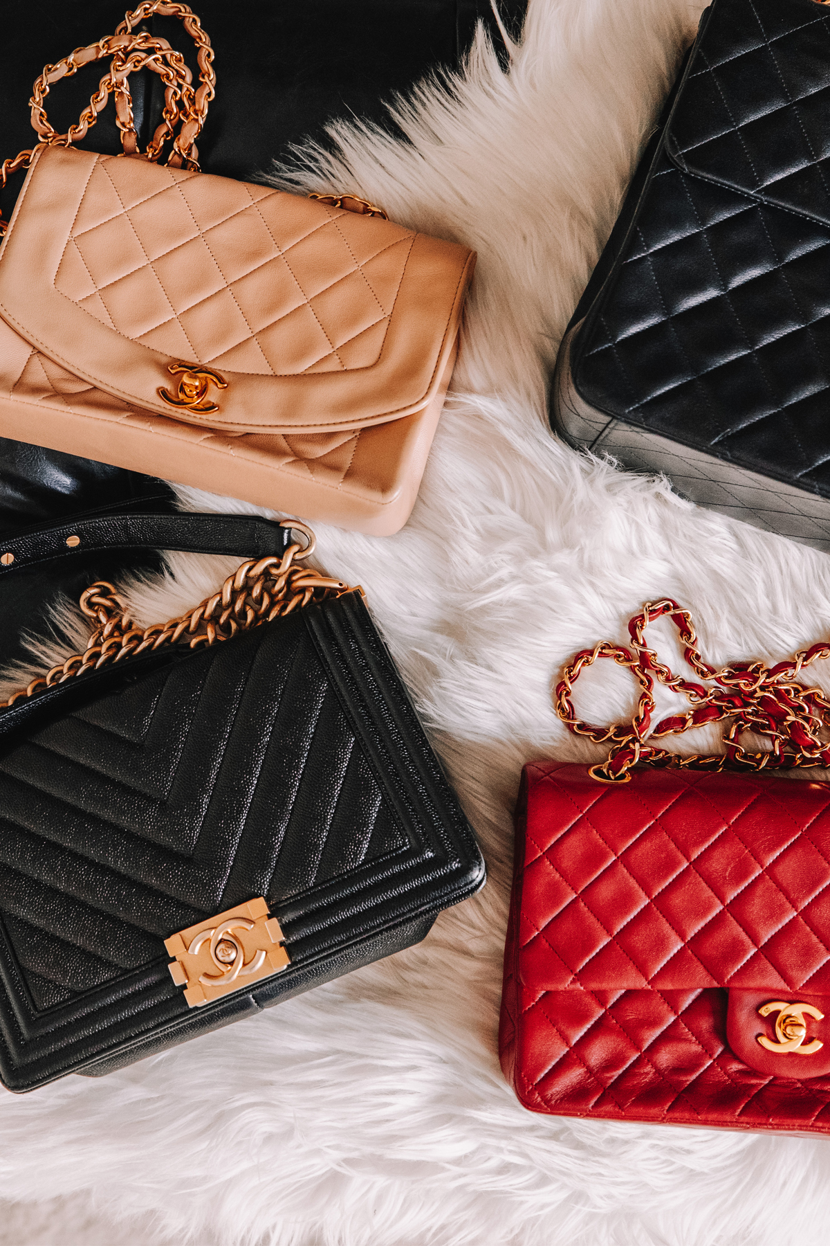 Fashion Jackson Chanel Handbag Collection 5