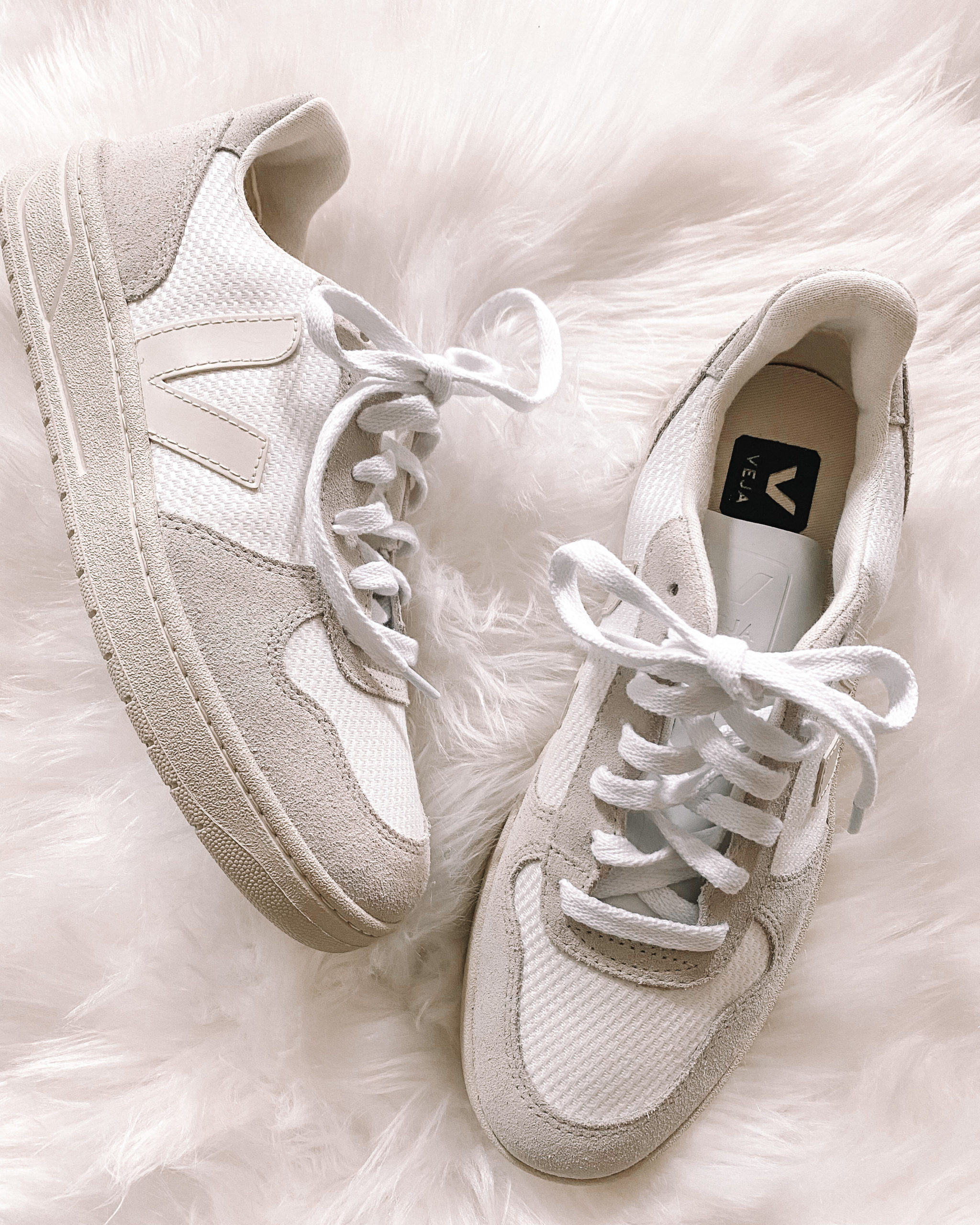 Veja V10 White Sneakers
