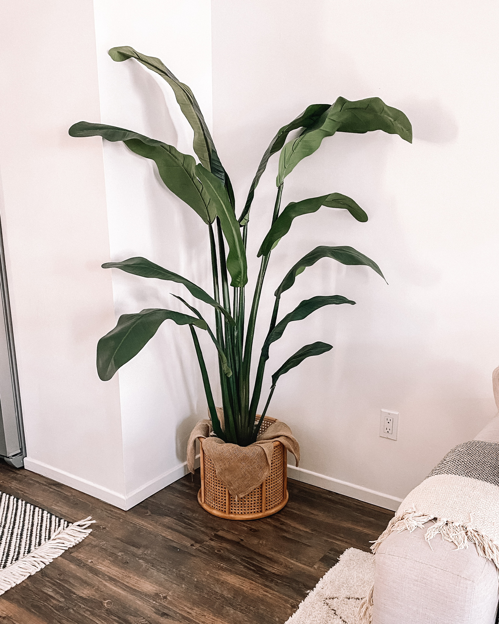 Fashion Jackson Living Room Home Decor Faux Bird of Paradise Plant