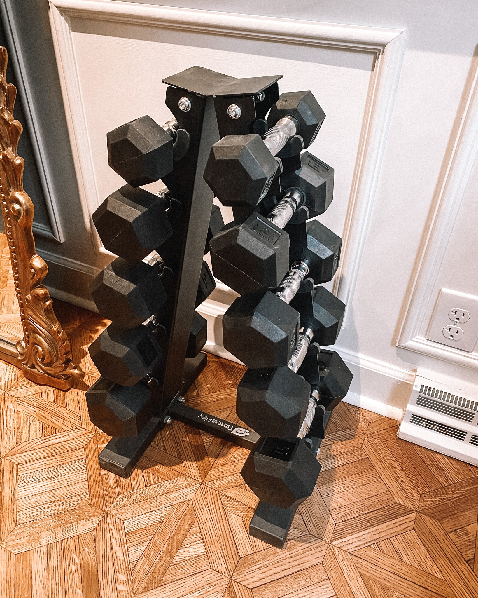 dumbbells weight stand