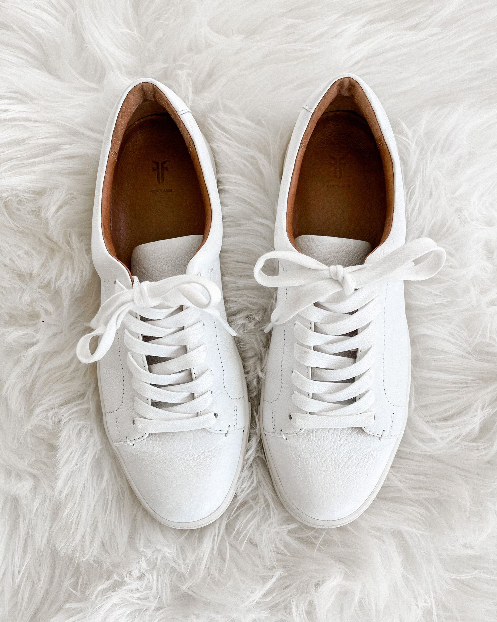 Fashion Jackson Frye White Ivy Sneakers